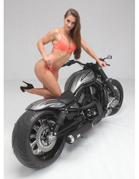 Piastra supporto / montaggio pedale freno