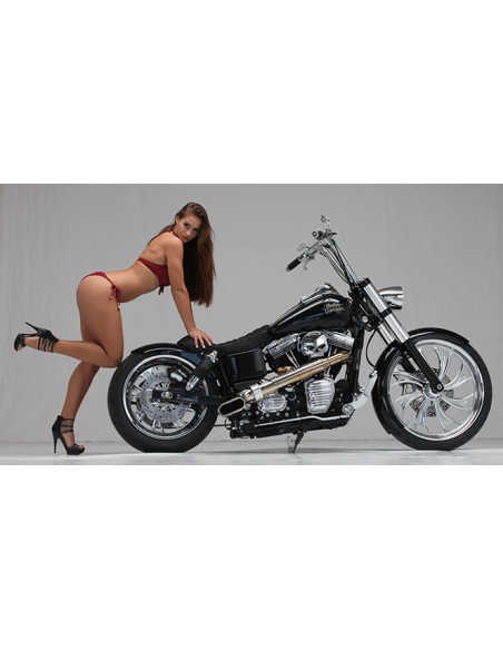 Kit Sissy Bar Dyna Glide
